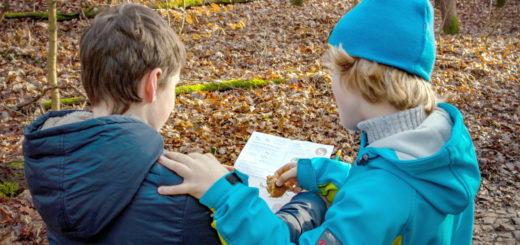 Kinder bei der Vogelbeoachtung